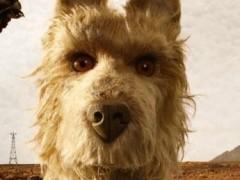 动画电影《犬之岛》最新影评 流放犬类动物后背的阴谋论